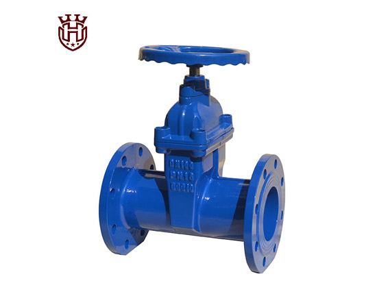 Do you know the general requirements for Resilient Seat Gate Valve?